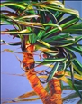 Sylvia Ditchburn - Tropical Pandanus No. 2