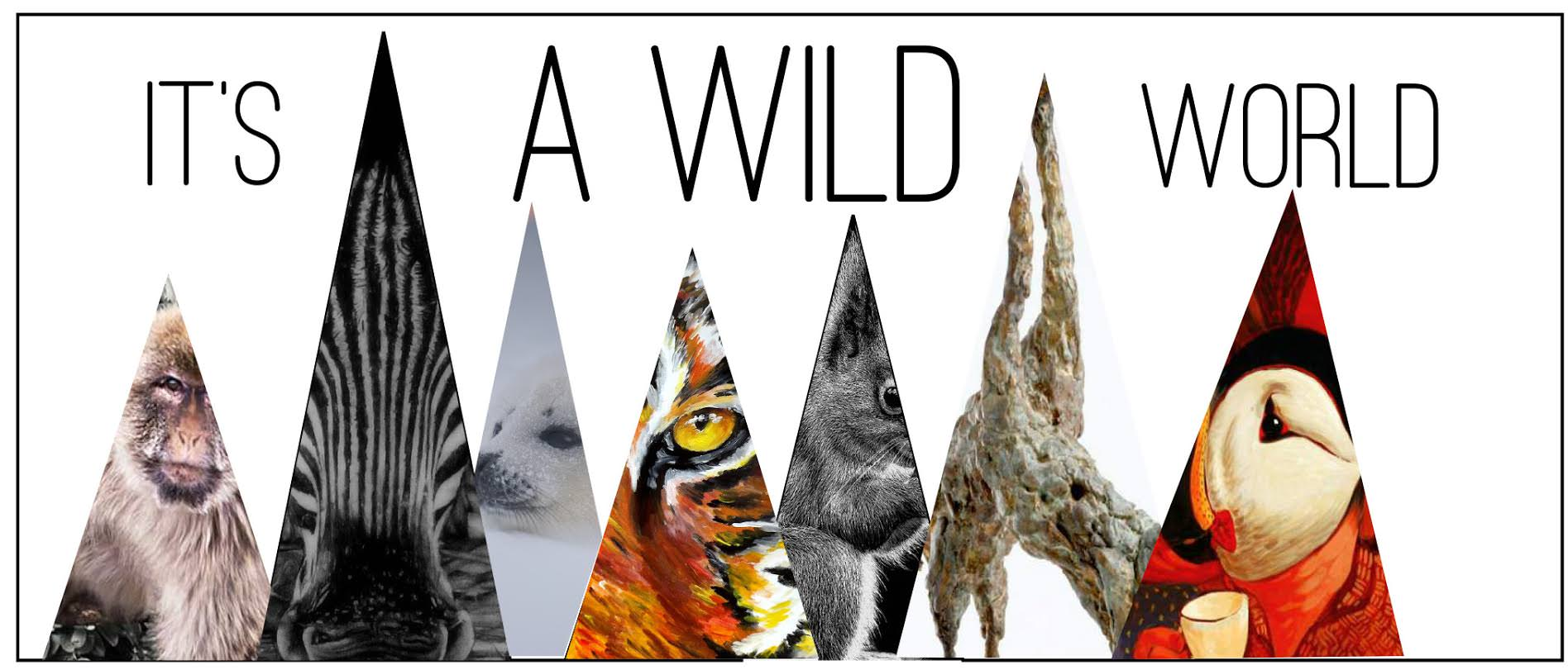 its a wild world blog
