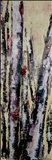 Dancing Birches (1 of 3)
