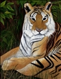 Bengal Tiger: Relaxing
